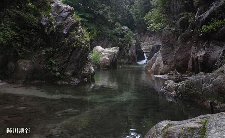 蒼社川は、今治の中心を流れる川で、水源は高縄山系の玉川町の東三方ヶ森中... 玉川ネット 蒼社川