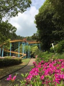 万葉の森池5